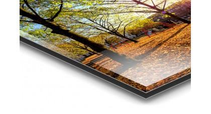 FineArt-Druck hinter Acrylglas Premium