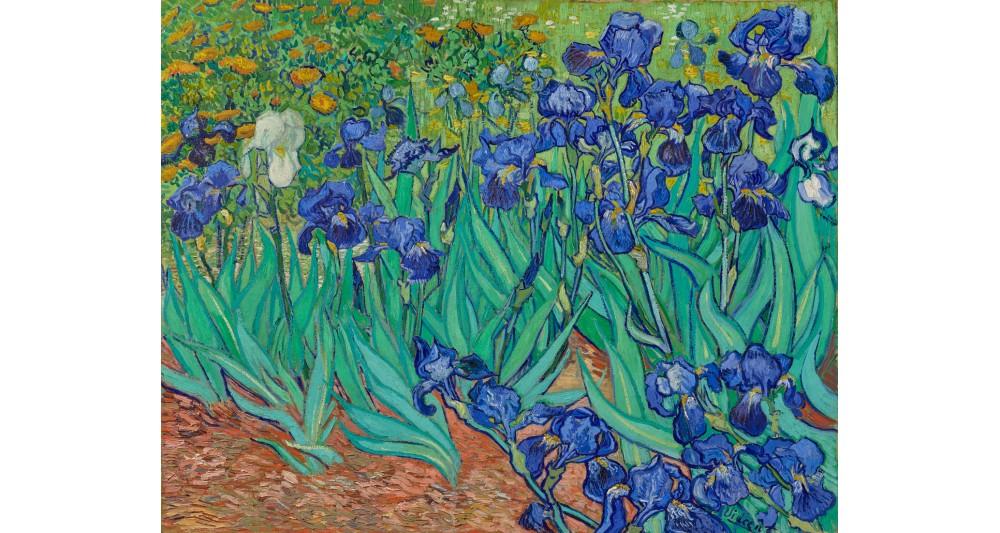Manufaktur 7 - Schwertlilien von Vincent van Gogh